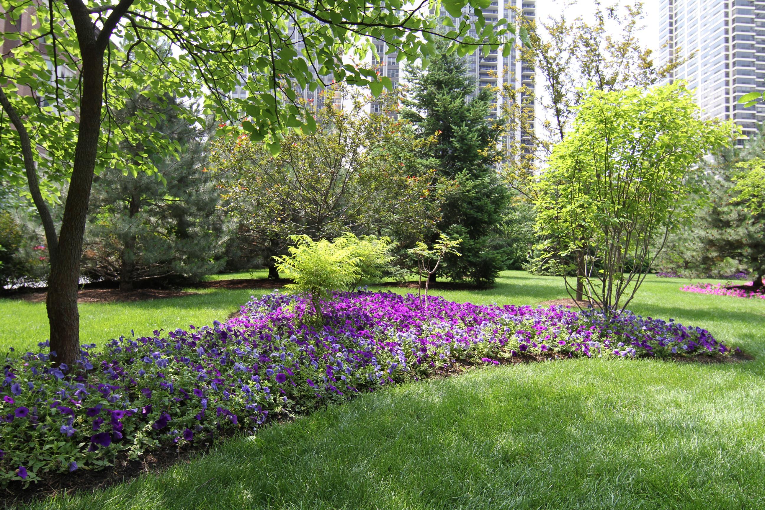 Sanctuary in the park 2