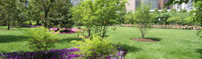 Sanctuary in the park
