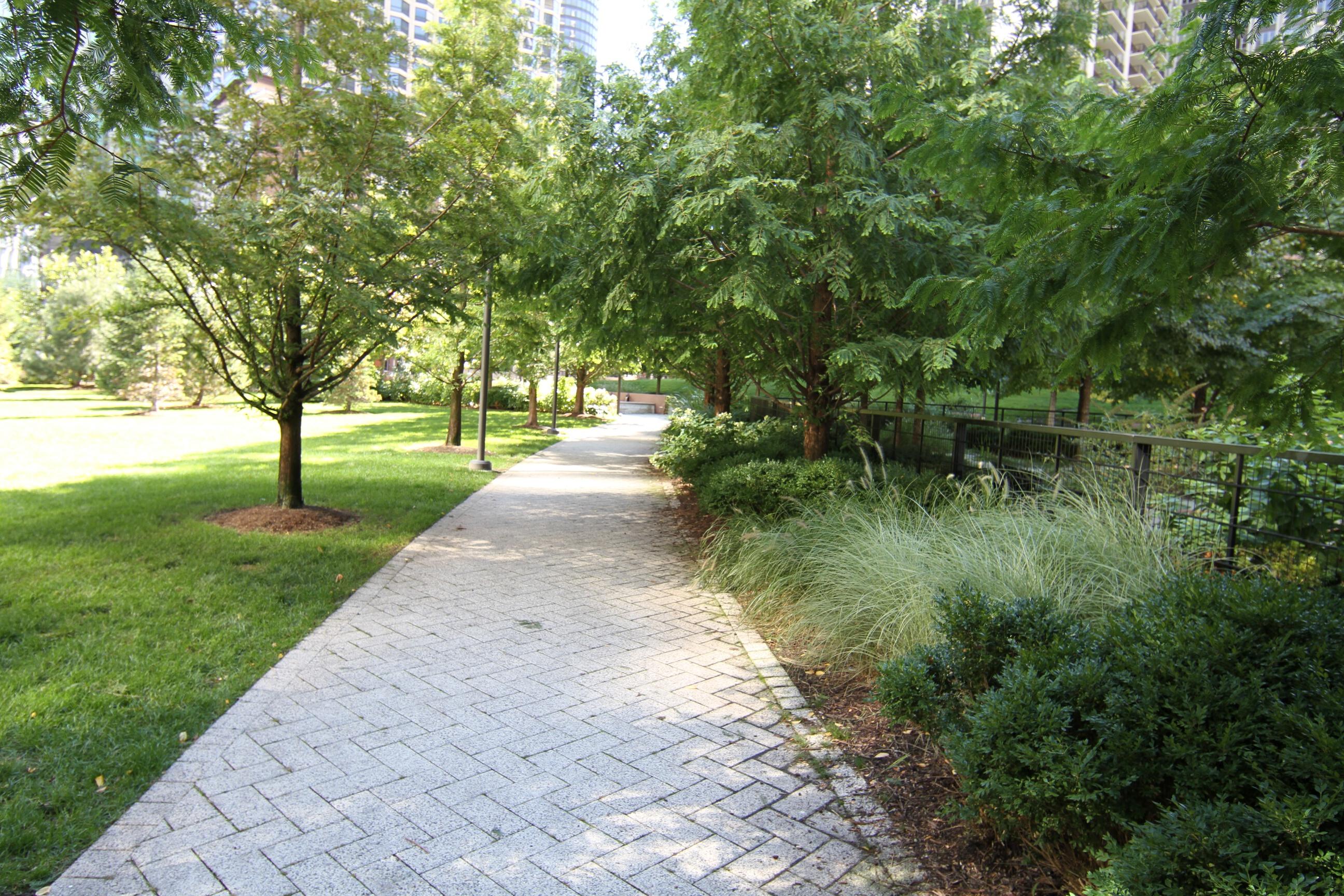 Pathway of serenity
