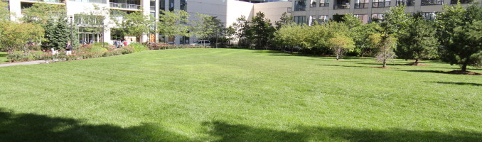 Grassy area in front of Lancaster