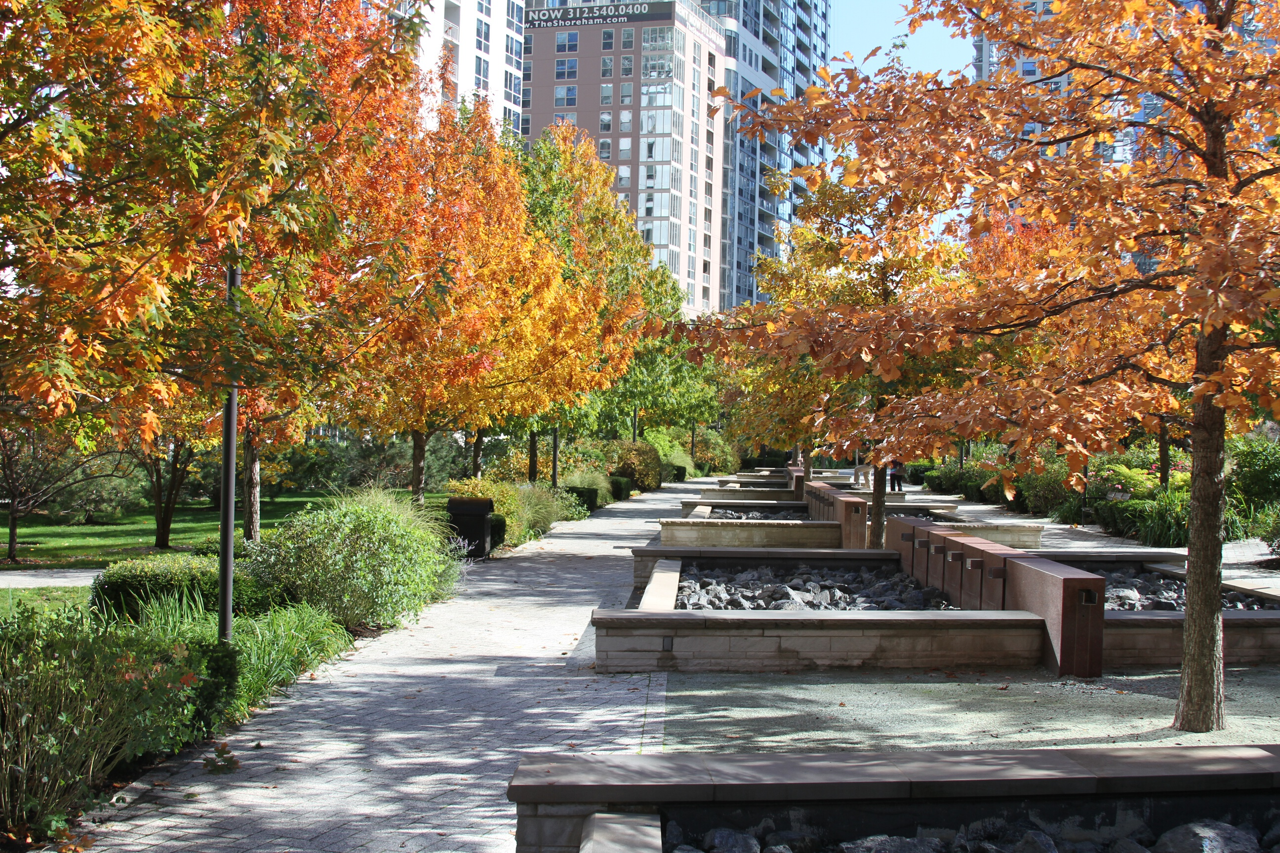 Fall in LSE Park
