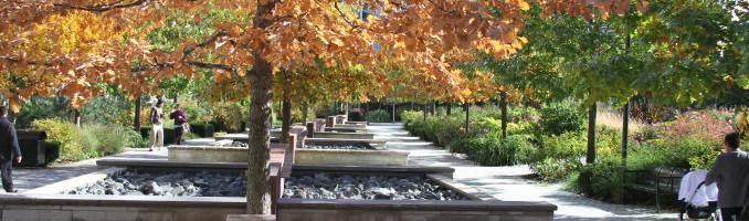 White Oaks herald the coming fall