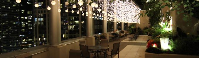 Lancasterpalooza party twinkling lights